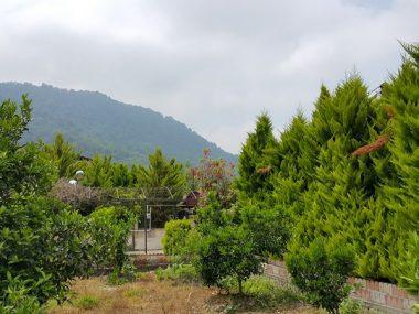 خرید ویلا باغ در نوشهر نجارده – ۵۵۷۹