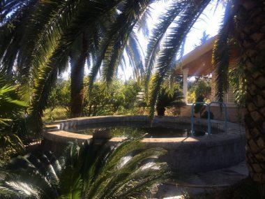 فروش باغ ویلا در رویان – ۵۳۳۷