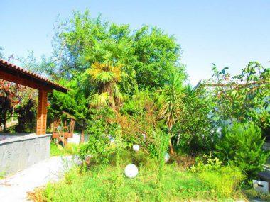 فروش ویلا باغ در رویان ونوش – ۵۷۳۳