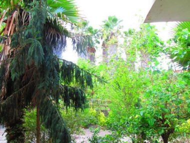 فروش ویلا باغ در نوشهر – ۵۷۳۴