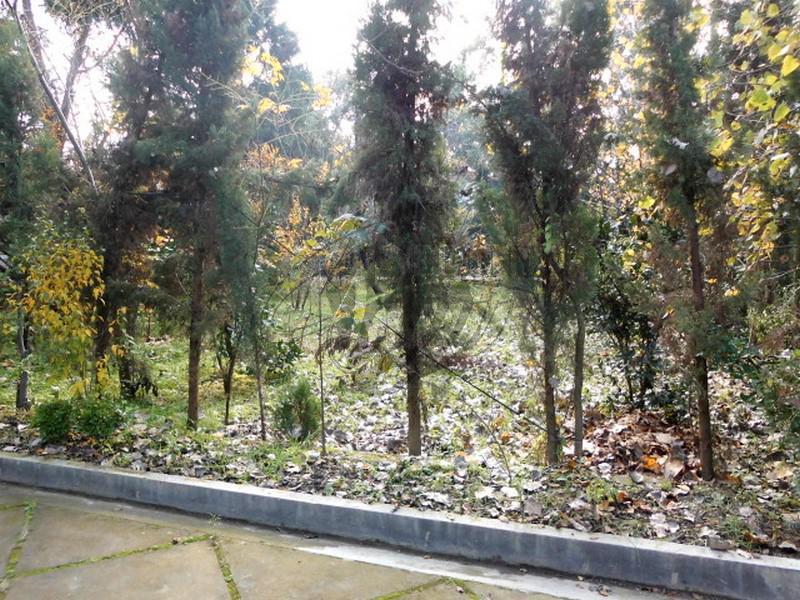 خرید زمین در محمودآباد ۱۲-۲۸۹