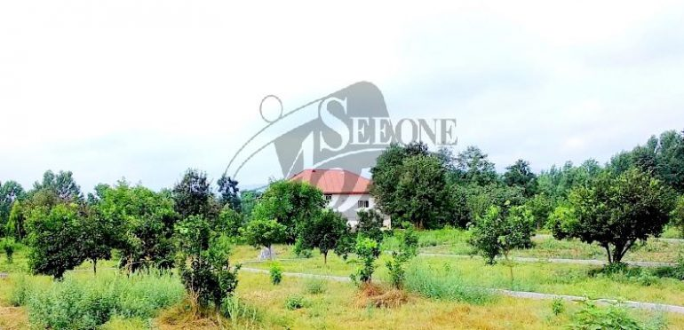خرید زمین در آمل ویژه شهرک سازی – ۳۰۴