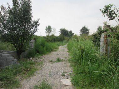 خرید زمین جنگلی در آمل ۱۰-۱۶۸
