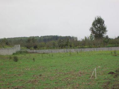 خرید زمین در چمستان ۱۰-۲۰۰