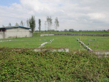 خرید زمین جنگلی در آمل ۱۰-۲۰۴