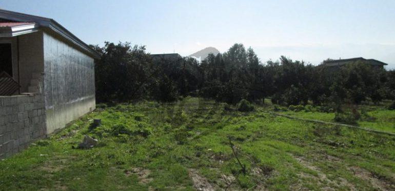 خرید زمین متراژ بالا در آمل – ۲۲۱