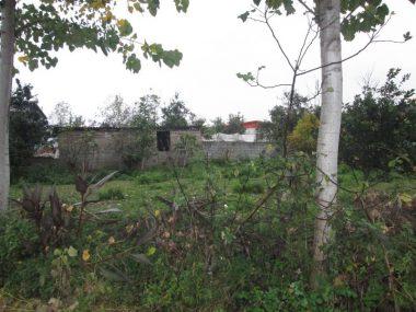 خرید زمین جنگلی در آمل ۱۰-۲۲۳