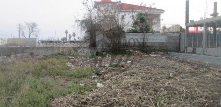 فروش زمین ساحلی در محمود آباد – ۲۴۴