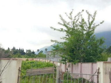 فروش زمین در نوشهر دهکده کتی – ۳۲۳