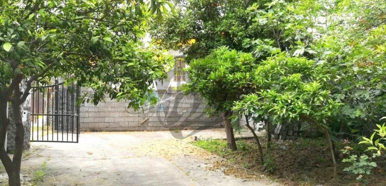 خرید ویلا باغ در نوشهر-۶۲۰۲