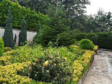 خرید ویلا باغ در نوشهر-۶۳۷۷