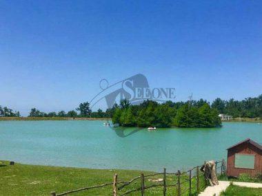دریاچه ی آویدر در نوشهر