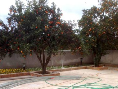 خرید ویلا باغ در شمال چمستان-۹۴۵۰
