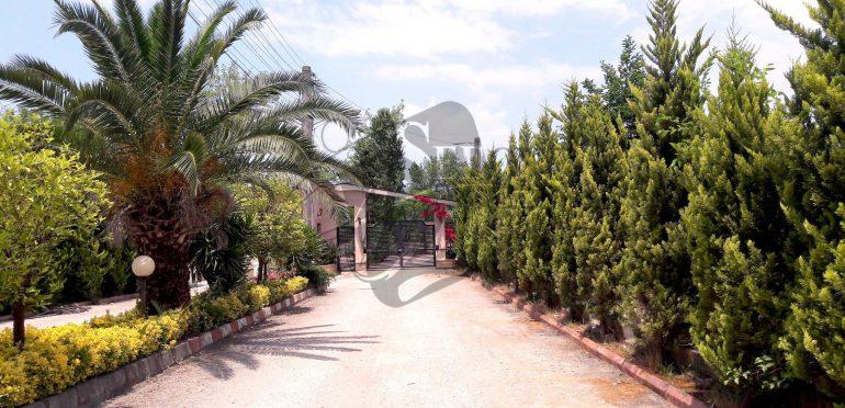 فروش زمین شهرکی در شمال نوشهر-۷۹۰۱