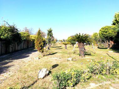 خرید زمین ساحلی در شمال نوشهر-۴۳۳۶