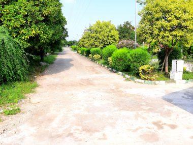 خرید زمین شهرکی در شمال نوشهر-۱۴۴۶۹