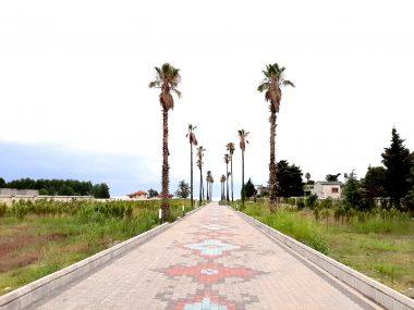 خرید زمین شهرکی ساحلی در شمال نوشهر-۱۵۷۹۰
