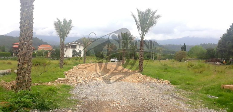خرید زمین شهرکی در شمال رویان-۲۰۵۵۸
