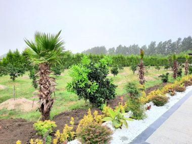 فروش باغ ویلا استخردار در شمال نوشهر-۲۲۱۸۸