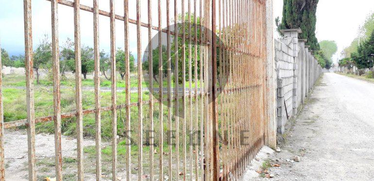 فروش زمین شهرکی در شمال رویان-۲۶۷۳۸