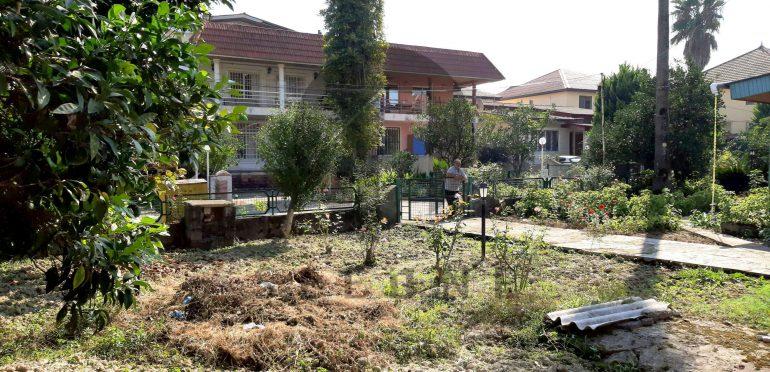 فروش زمین شهرکی در شمال رویان-۲۵۴۹۵