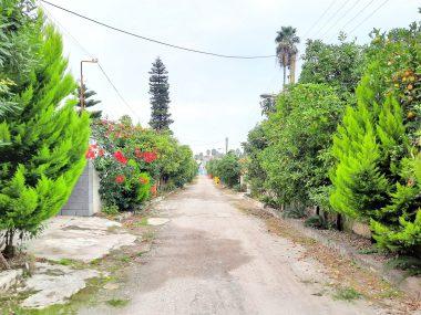 خرید زمین شهرکی در شمال نوشهر لتینگان-۱۰۲۳