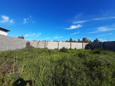 خرید زمین در شمال نوشهر چلک-۳۰۷۴۹