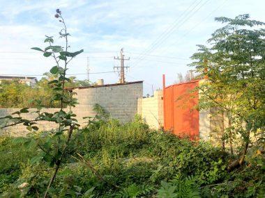 خرید زمین در شمال رویان ونوش-۲۶۷۳۵