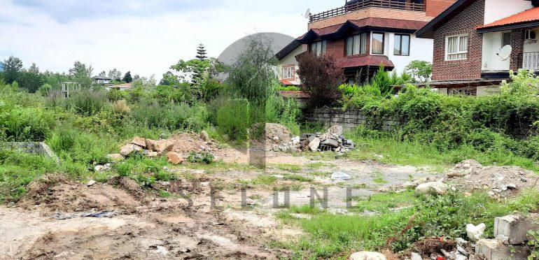 خرید زمین در شمال نوشهر چلک-۱۴۵۲۲