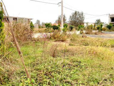 خرید زمین شهرکی در شمال رویان-۲۵۹۸۹