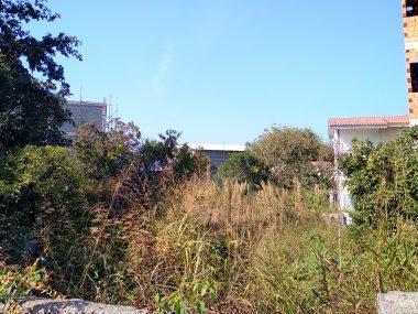 خرید زمین در شمال رویان ونوش-۲۶۱۱۴