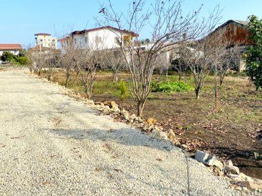خرید زمین شهرکی در شمال نوشهر چلک-۳۴۲۳۱
