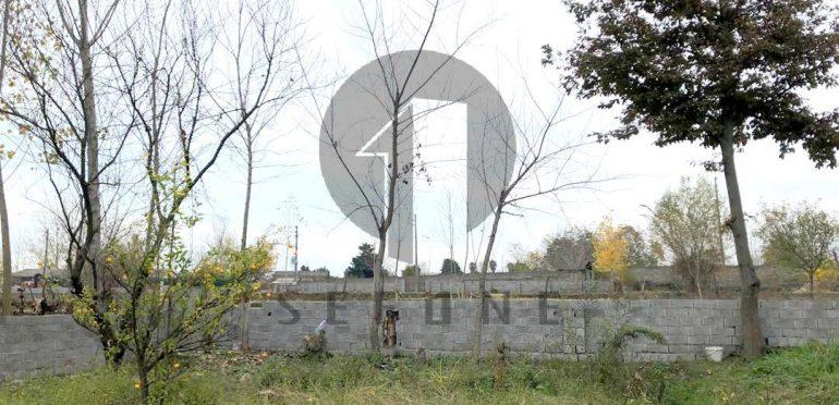 خرید زمین در شمال رویان-۳۱۷۴۹