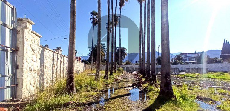 فروش زمین در شمال نوشهر-۳۵۴۹۵