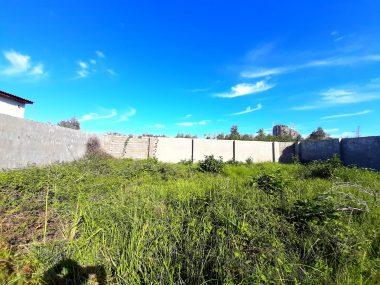 خرید زمین در شمال نوشهر چلندر-۳۶۹۱۸