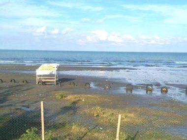 فروش زمین ساحلی در نمک آبرود-۳۷۸۵۷