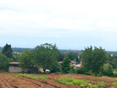 خرید زمین در شمال کلارآباد-۴۳۳۲۳