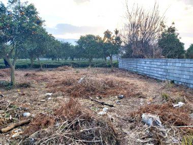 خرید زمین در شمال کلارآباد-۴۱۱۴۸