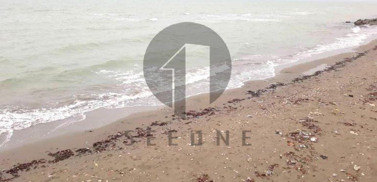 فروش زمین قواره اول دریا در شمال نوشهر-۴۴۱۸۱