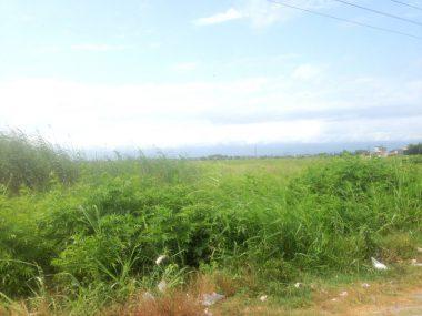 فروش زمین در شمال محمودآباد-۱۳۷۶۹
