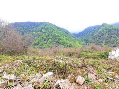 فروش زمین در شمال نوشهر چلک-۴۶۸۲۳