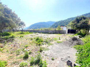 خرید زمین در شمال نوشهر نجارده-۴۷۷۹۳