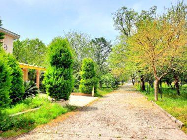 خرید زمین شهرکی در شمال نوشهر-۴۷۸۵۲