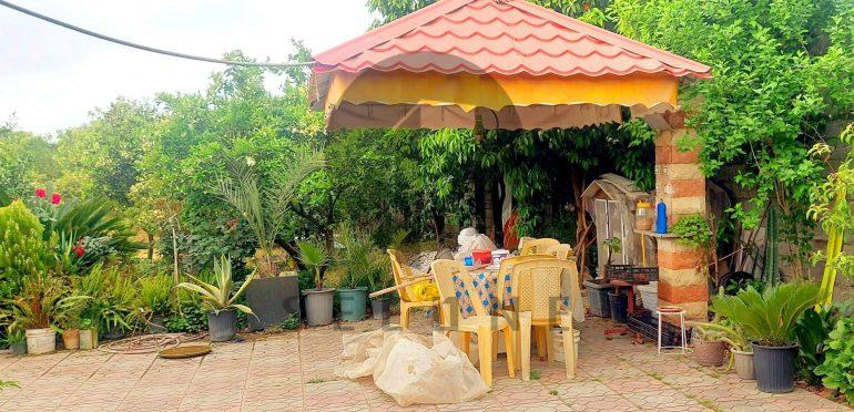 فروش ویلا باغ ساحلی در شمال سرخرود-۲۹۰۸۵