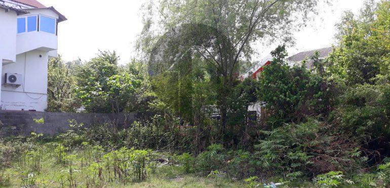خرید زمین در شمال رویان ونوش-۴۸۸۷۹
