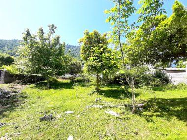 فروش زمین در شمال نوشهر نجارده-۴۸۴۸۶