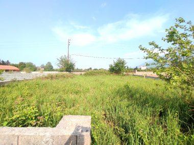 خرید زمین در شمال نوشهر-۵۰۴۹۴