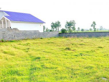 فروش زمین در شمال محمودآباد-۵۱۳۷۹