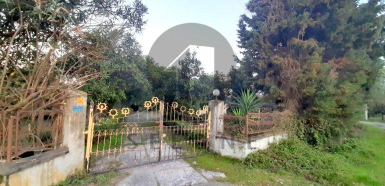 فروش ویلا باغ در شمال نوشهر-۴۵۲۹۷