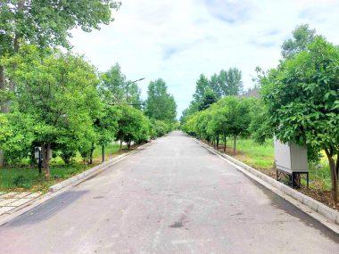 خرید زمین شهرکی در شمال رویان-۵۱۵۵۴